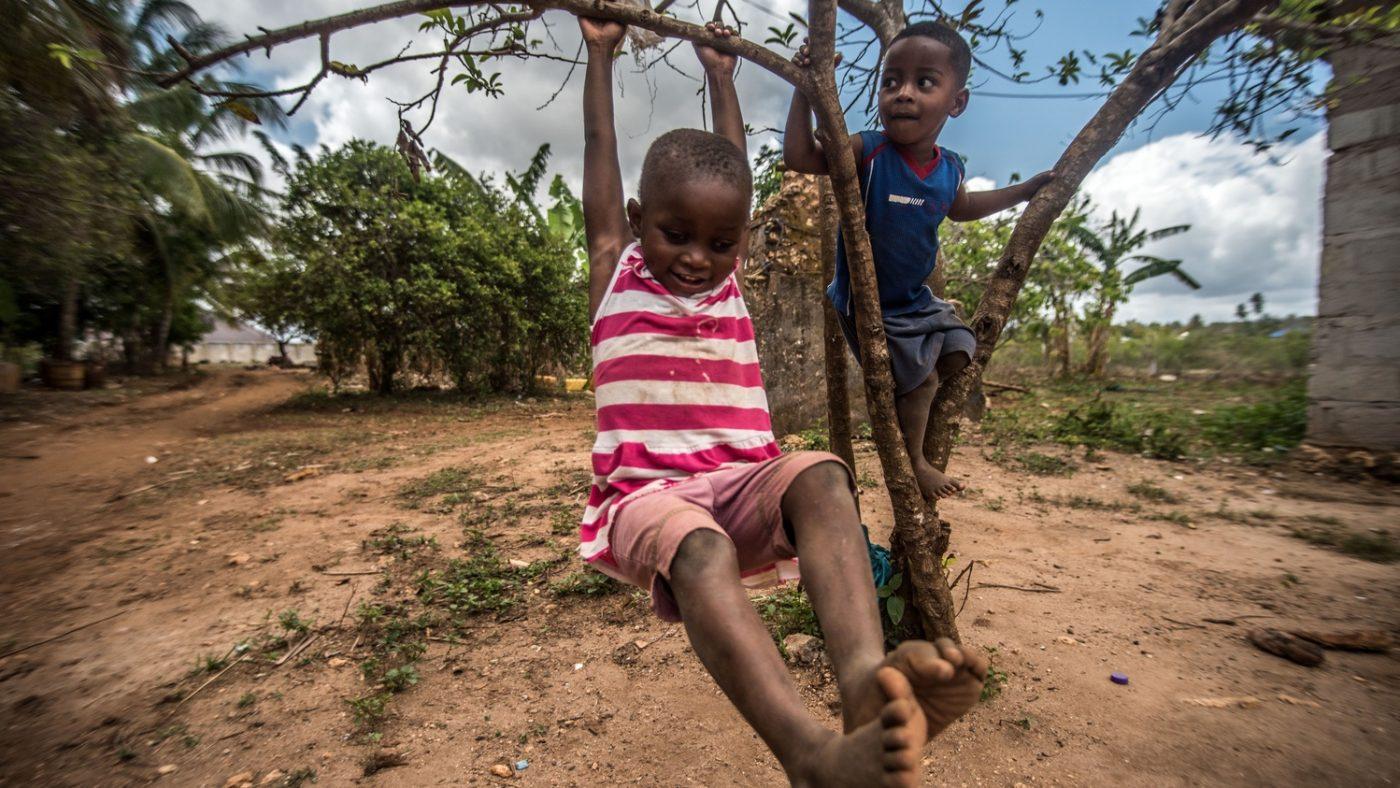 Due bambini sorridono mentre si arrampicano sui rami di un albero